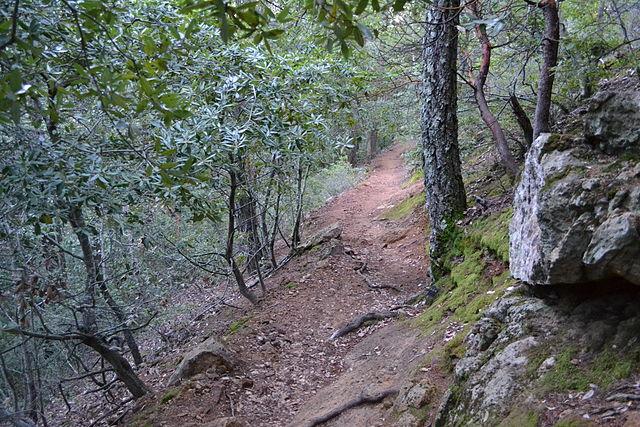 Robert-Louis-Stevenson-Trail