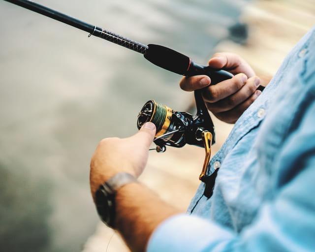 pêcher-la-carpe