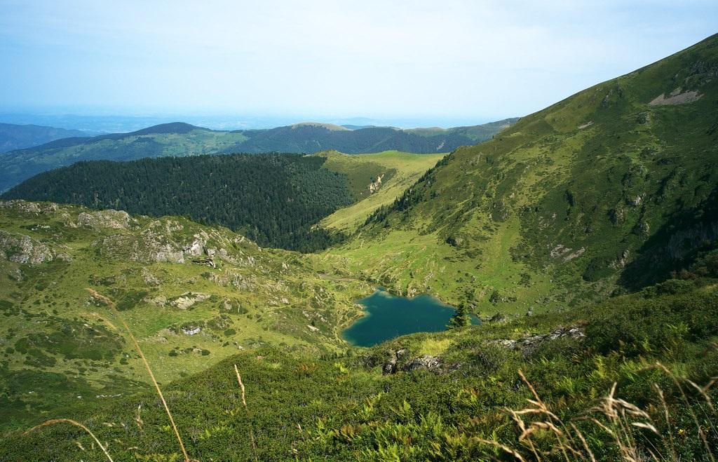Balade-dans-le-Pyrenees