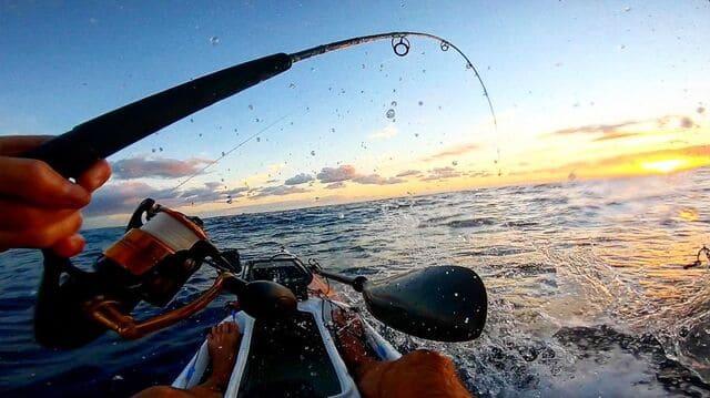 capturer-des-poissons
