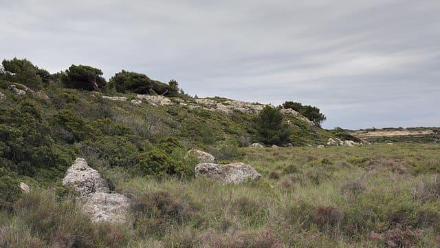 La-reserve-naturelle-regionale-du-Queyras