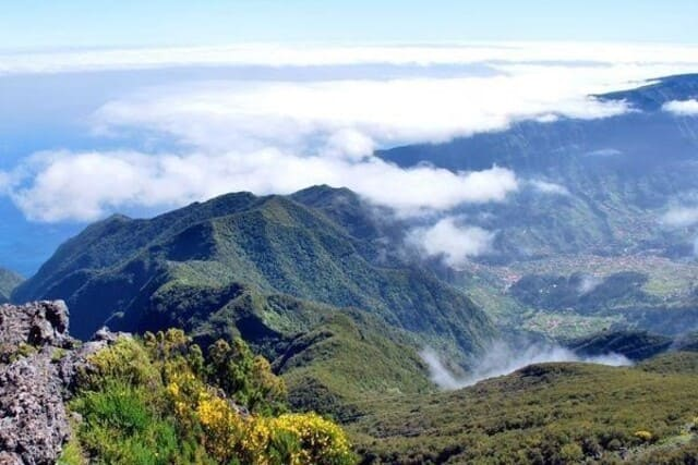Pico-do-Ariero