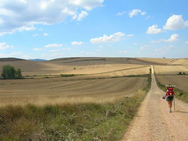 le-Camino-de-Santiago